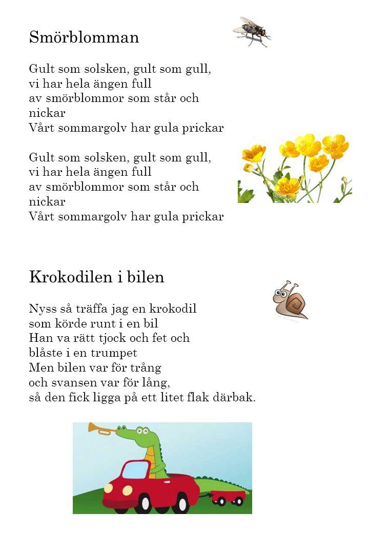 Smörblomman Gult som solsken, gult som gull, vi har hela ängen full av smörblommor som står och nickar Vårt sommargolv har gula prickar Krokodilen i b