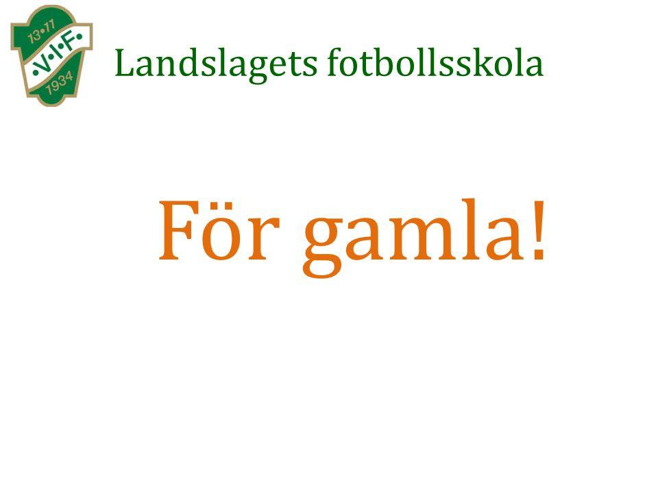 Landslagets fotbollsskola För gamla!