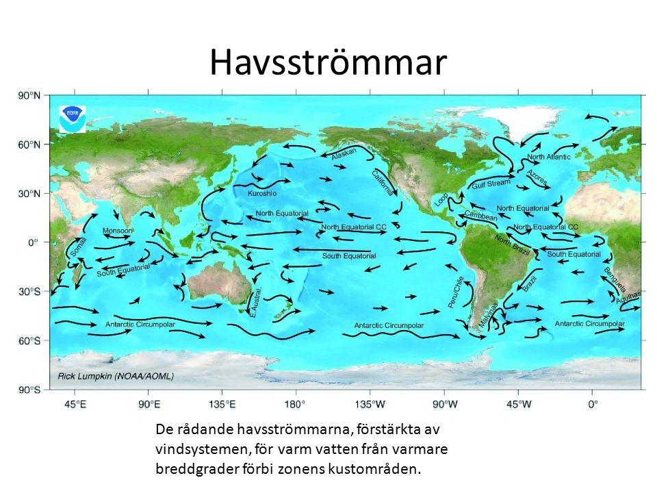 Havsströmmar De rådande havsströmmarna, förstärkta av vindsystemen, för varm vatten från varmare breddgrader förbi zonens kustområden.