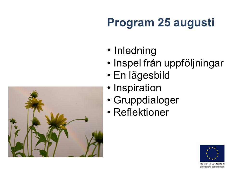 Program 26 augusti Återkoppling Inspiration Gruppdialoger Summering Utvärdering Reflektioner