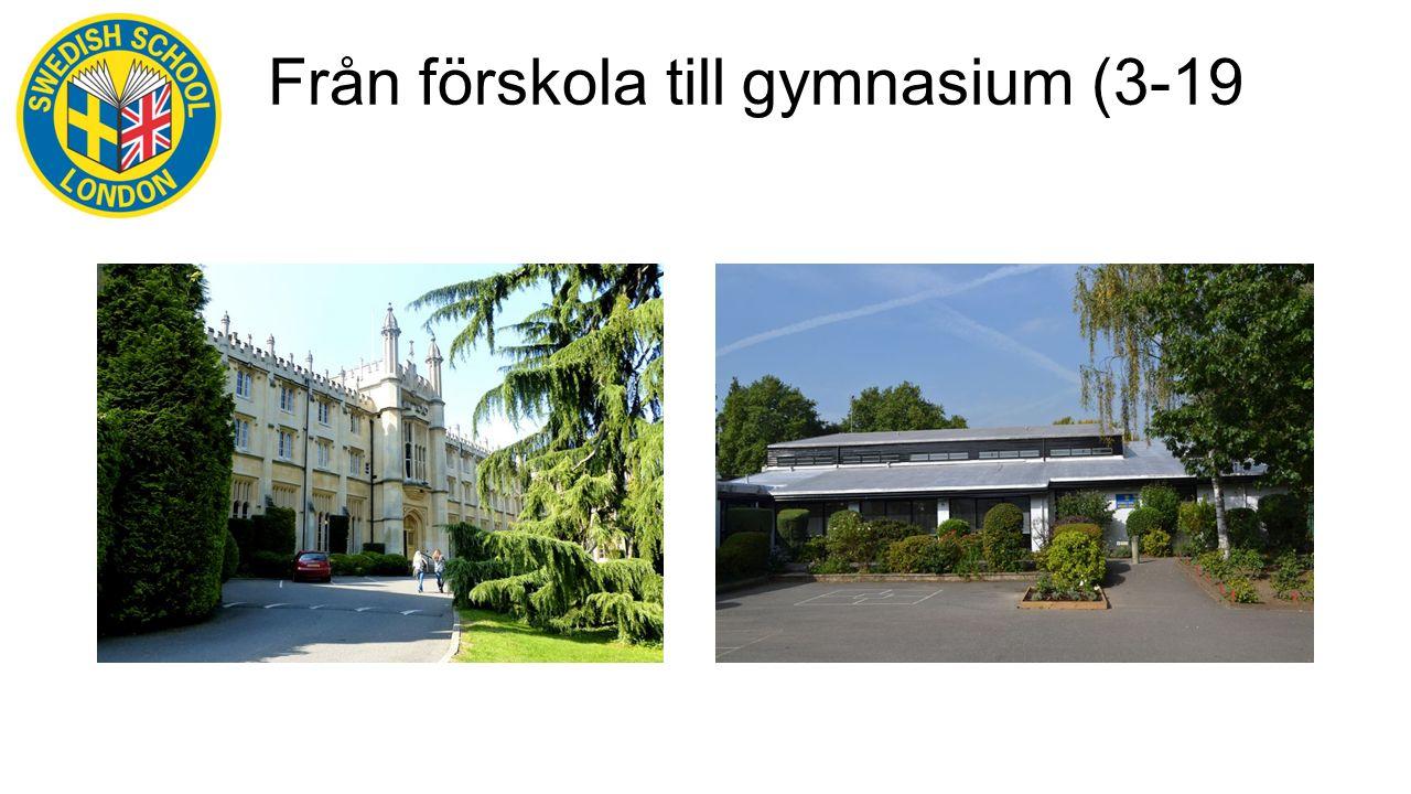 Från förskola till gymnasium (3-19 år)