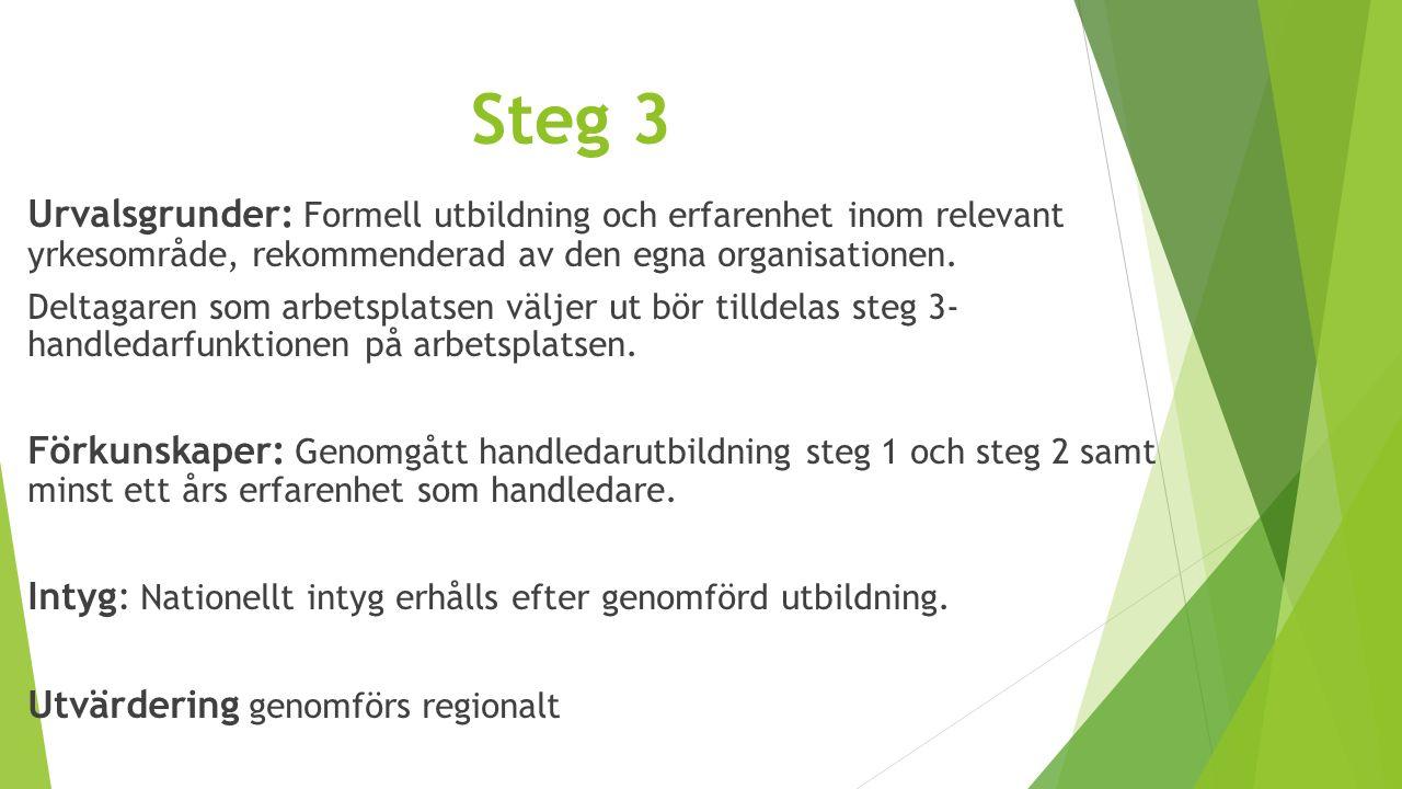 Steg 3 Urvalsgrunder: Formell utbildning och erfarenhet inom relevant yrkesområde, rekommenderad av den egna organisationen. Deltagaren som arbetsplat