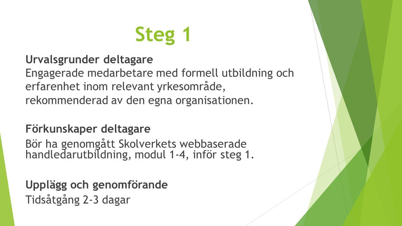Steg 2 Urvalsgrunder deltagare Engagerade medarbetare med formell utbildning och erfarenhet inom relevant yrkesområde, rekommenderad av den egna organisationen.