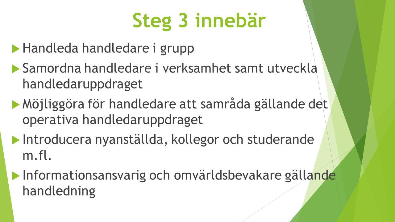 Steg 3 innebär  Handleda handledare i grupp  Samordna handledare i verksamhet samt utveckla handledaruppdraget  Möjliggöra för handledare att samrå