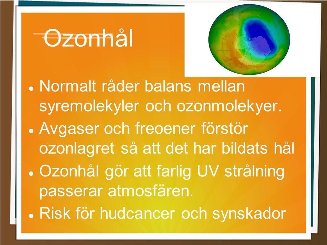 Ozonhål Normalt råder balans mellan syremolekyler och ozonmolekyer. Avgaser och freoener förstör ozonlagret så att det har bildats hål Ozonhål gör att