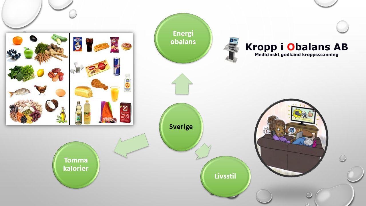 Sverige Energi obalans Livsstil Tomma kalorier