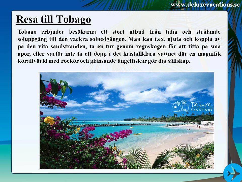 Resa till Tobago Tobago erbjuder besökarna ett stort utbud från tidig och strålande soluppgång till den vackra solnedgången. Man kan t.ex. njuta och k