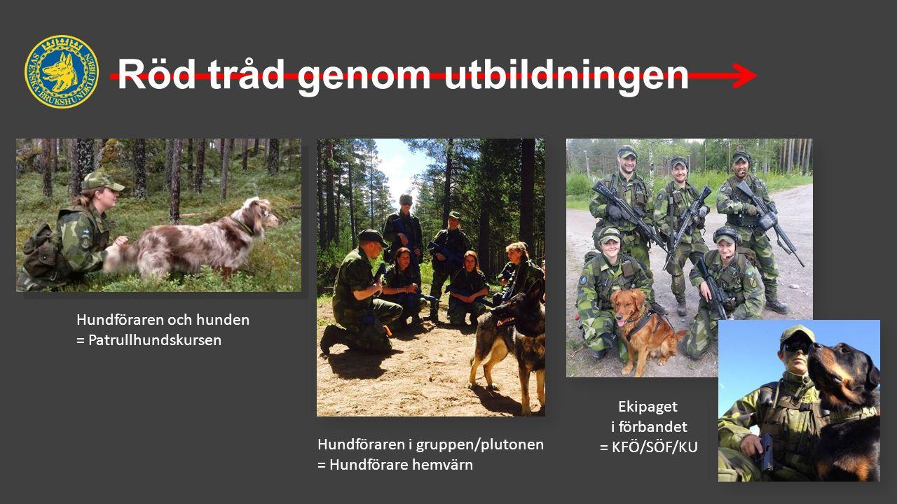 Röd tråd genom utbildningen Hundföraren och hunden = Patrullhundskursen Hundföraren i gruppen/plutonen = Hundförare hemvärn Ekipaget i förbandet = KFÖ