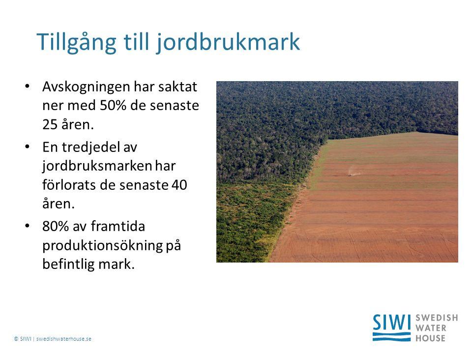 © SIWI | swedishwaterhouse.se Avskogningen har saktat ner med 50% de senaste 25 åren.