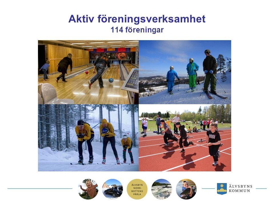 Aktiv föreningsverksamhet 114 föreningar