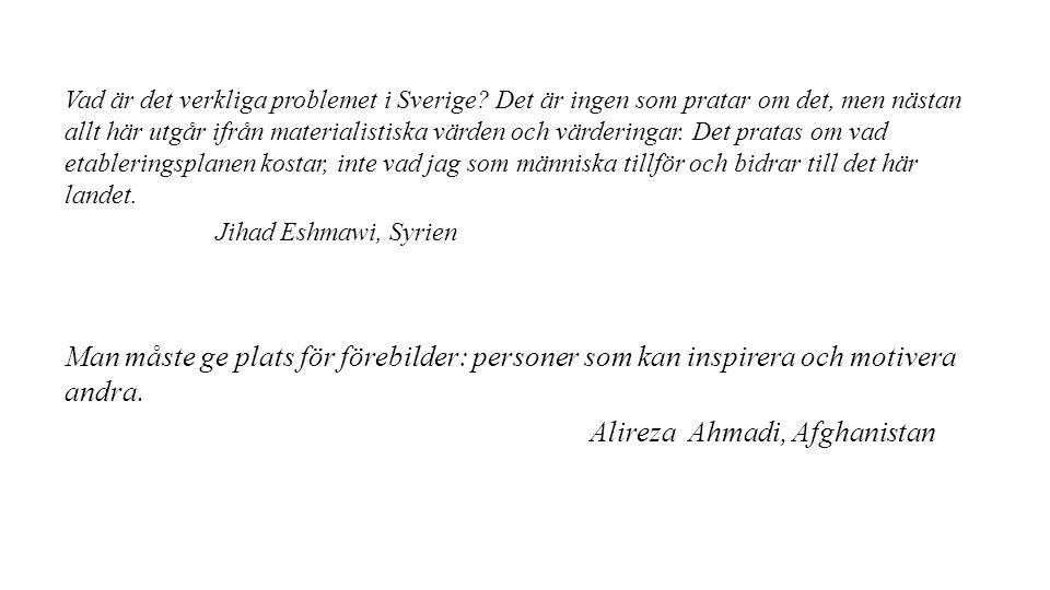Vad är det verkliga problemet i Sverige.