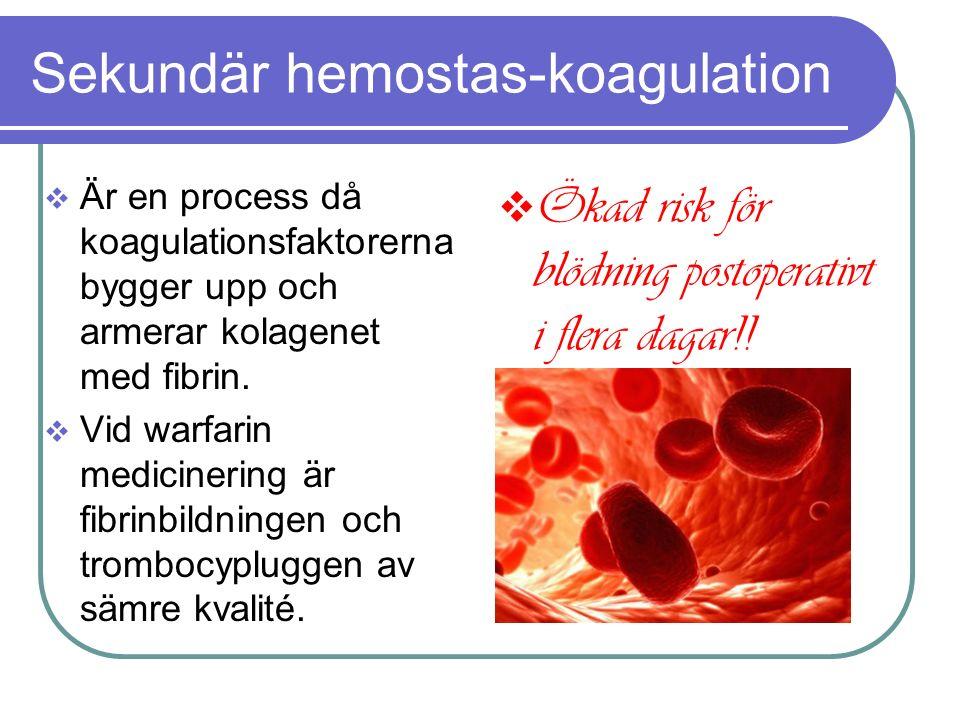 Sekundär hemostas-koagulation  Är en process då koagulationsfaktorerna bygger upp och armerar kolagenet med fibrin.