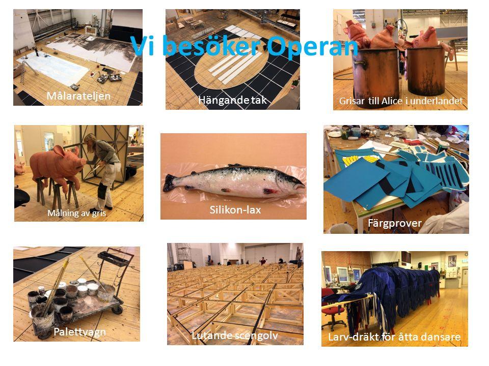 Målning av gris Palettvagn Silikon-lax Färgprover Målarateljen Larv-dräkt för åtta dansare Grisar till Alice i underlandet Hängande tak Lutande scengolv Vi besöker Operan