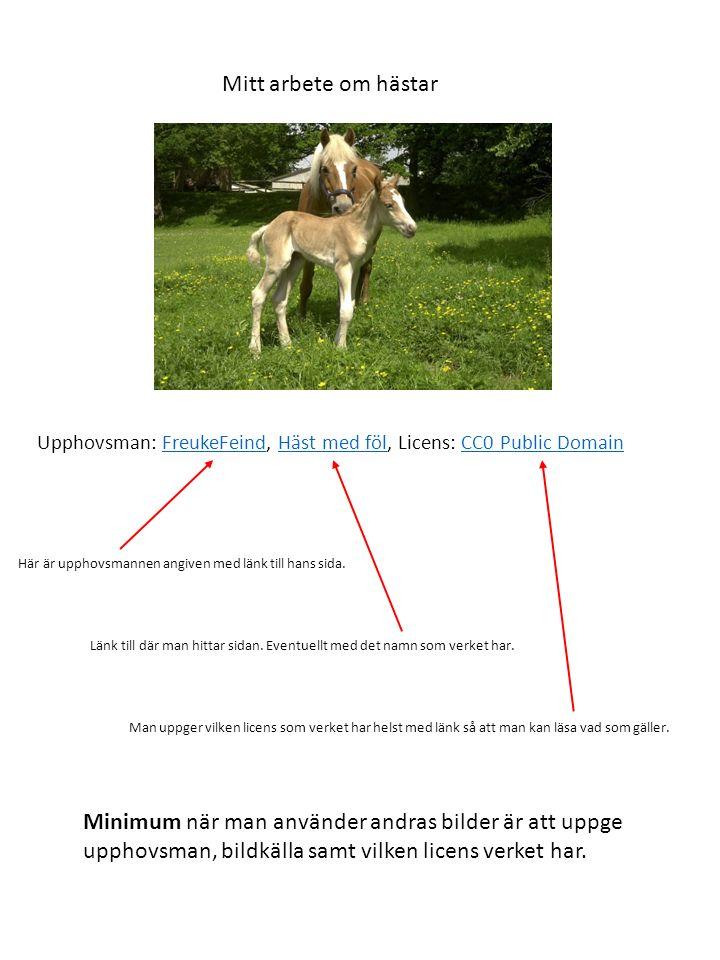 Mitt arbete om hästar Upphovsman: FreukeFeind, Häst med föl, Licens: CC0 Public DomainFreukeFeindHäst med fölCC0 Public Domain Här är upphovsmannen angiven med länk till hans sida.