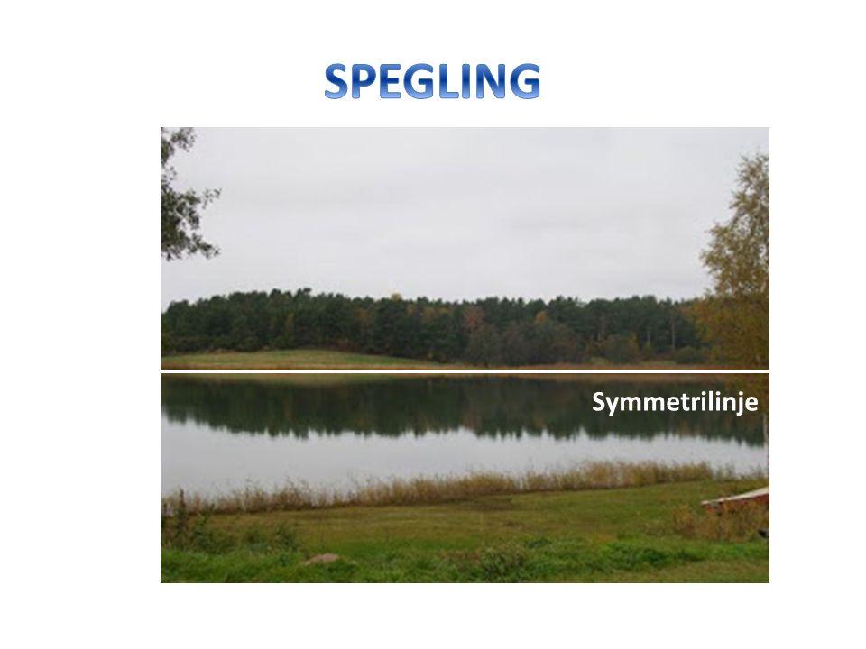 Symmetrilinje