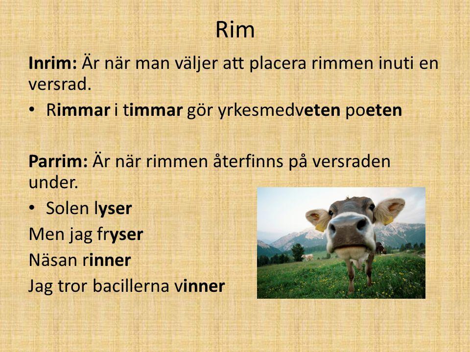 Rim Inrim: Är när man väljer att placera rimmen inuti en versrad. Rimmar i timmar gör yrkesmedveten poeten Parrim: Är när rimmen återfinns på versrade