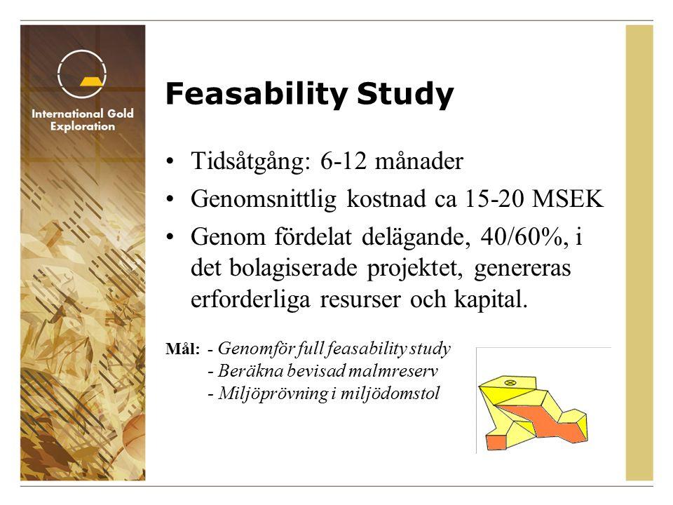 Feasability Study Tidsåtgång: 6-12 månader Genomsnittlig kostnad ca 15-20 MSEK Genom fördelat delägande, 40/60%, i det bolagiserade projektet, genereras erforderliga resurser och kapital.