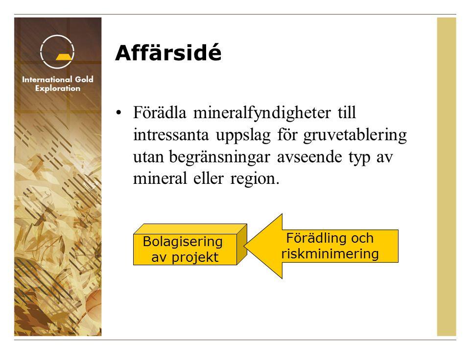 Affärsidé Förädla mineralfyndigheter till intressanta uppslag för gruvetablering utan begränsningar avseende typ av mineral eller region.