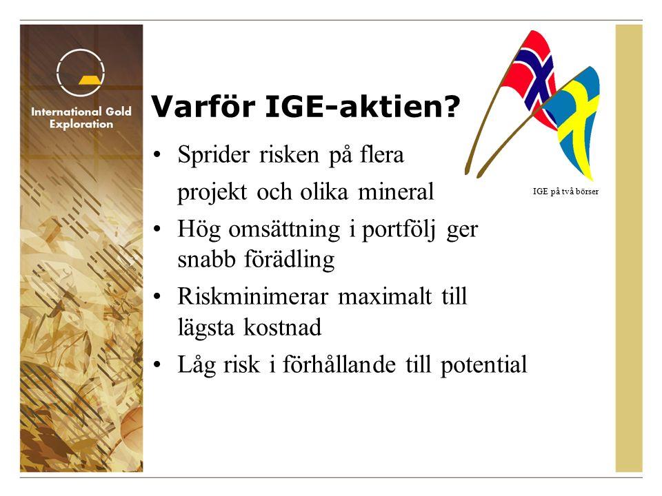 IGE på två börser Varför IGE-aktien.