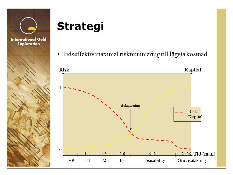 Strategi Tidseffektiv maximal riskminimering till lägsta kostnad.