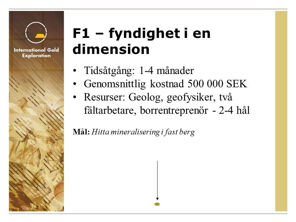 F1 – fyndighet i en dimension Tidsåtgång: 1-4 månader Genomsnittlig kostnad 500 000 SEK Resurser: Geolog, geofysiker, två fältarbetare, borrentreprenör - 2-4 hål Mål: Hitta mineralisering i fast berg