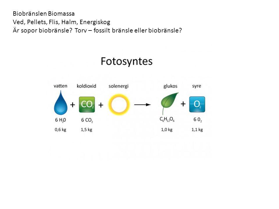 Biobränslen Biomassa Ved, Pellets, Flis, Halm, Energiskog Är sopor biobränsle.