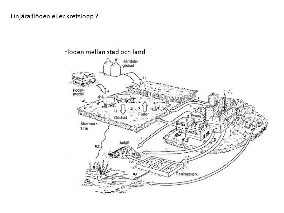 Linjära flöden eller kretslopp ? Flöden mellan stad och land