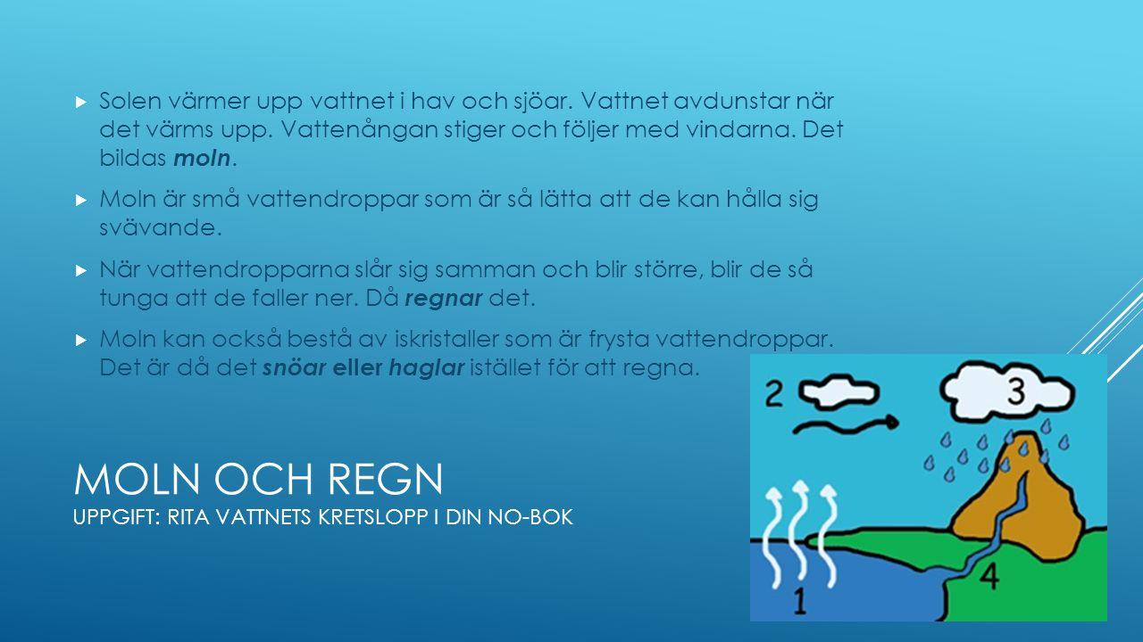 MOLN OCH REGN UPPGIFT: RITA VATTNETS KRETSLOPP I DIN NO-BOK  Solen värmer upp vattnet i hav och sjöar.