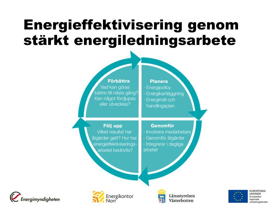 Energieffektivisering genom stärkt energiledningsarbete
