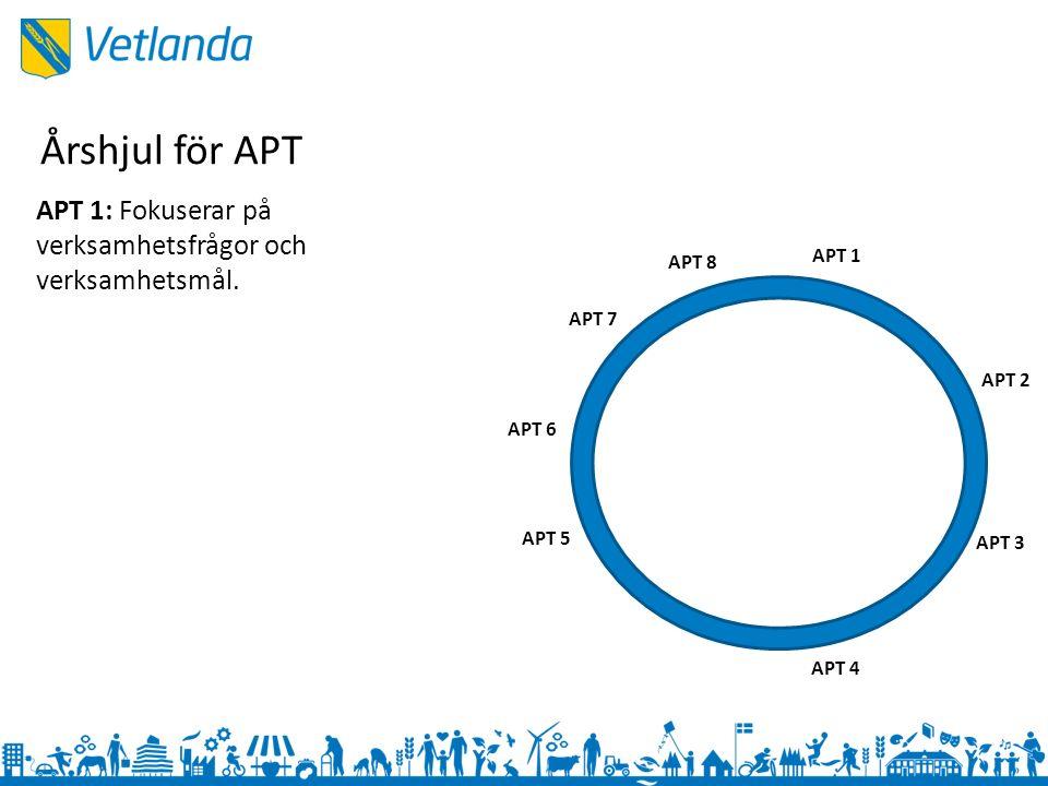 APT 1 APT 3 APT 2 APT 4 APT 5 APT 6 APT 7 APT 8 APT 1: Fokuserar på verksamhetsfrågor och verksamhetsmål.