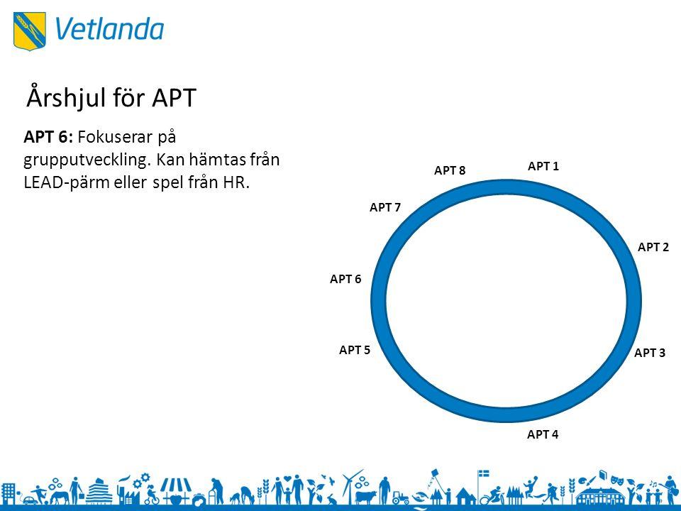 APT 1 APT 3 APT 2 APT 4 APT 5 APT 6 APT 7 APT 8 APT 6: Fokuserar på grupputveckling.