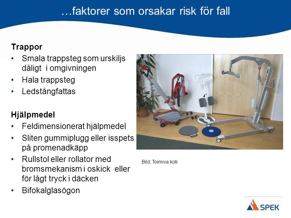 …faktorer som orsakar risk för fall Trappor Smala trappsteg som urskiljs dåligt i omgivningen Hala trappsteg Ledstångfattas Hjälpmedel Feldimensionera