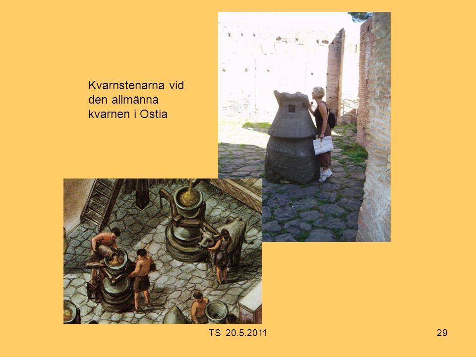 29 Kvarnstenarna vid den allmänna kvarnen i Ostia TS 20.5.2011