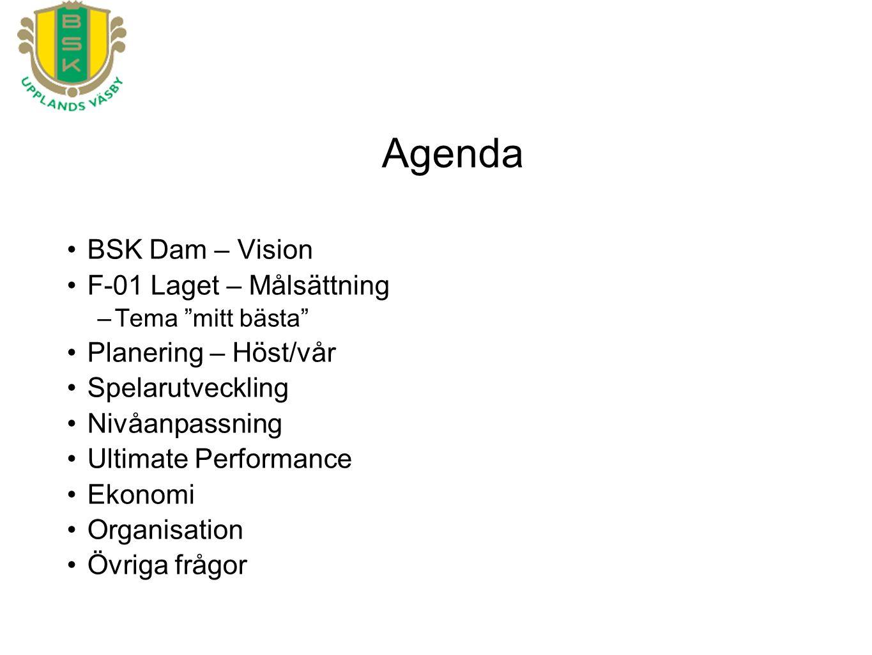 BSK Dam – Vision F-01 Laget – Målsättning –Tema mitt bästa Planering – Höst/vår Spelarutveckling Nivåanpassning Ultimate Performance Ekonomi Organisation Övriga frågor Agenda