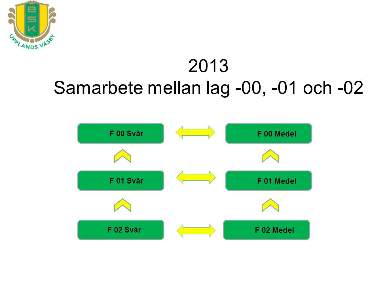 F 00 Svår F 01 Svår F 02 Svår F 00 Medel F 01 Medel F 02 Medel 2013 Samarbete mellan lag -00, -01 och -02