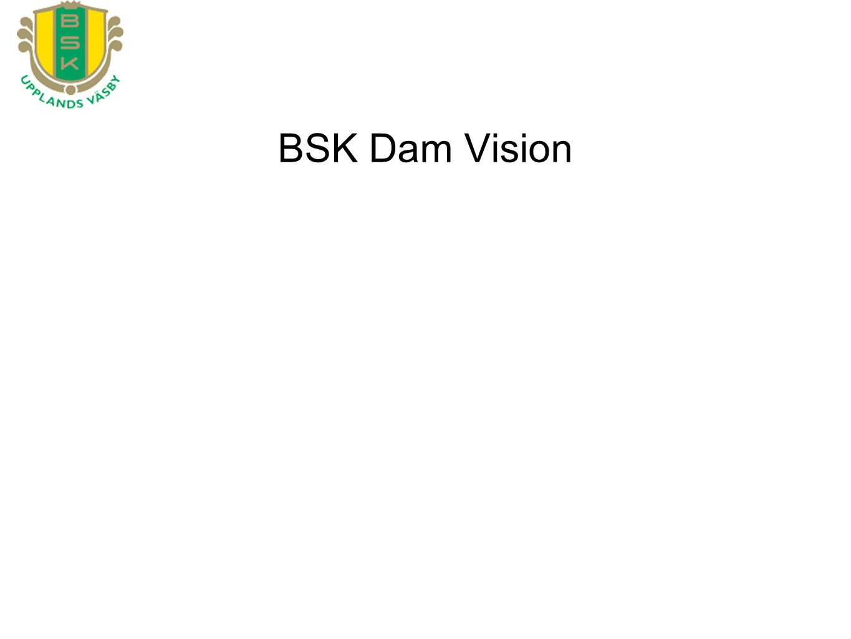 BSK Dam Vision