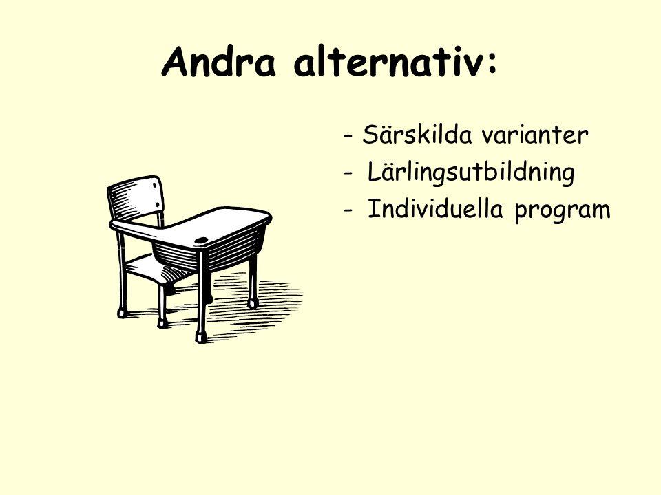 Andra alternativ: - Särskilda varianter -Lärlingsutbildning -Individuella program