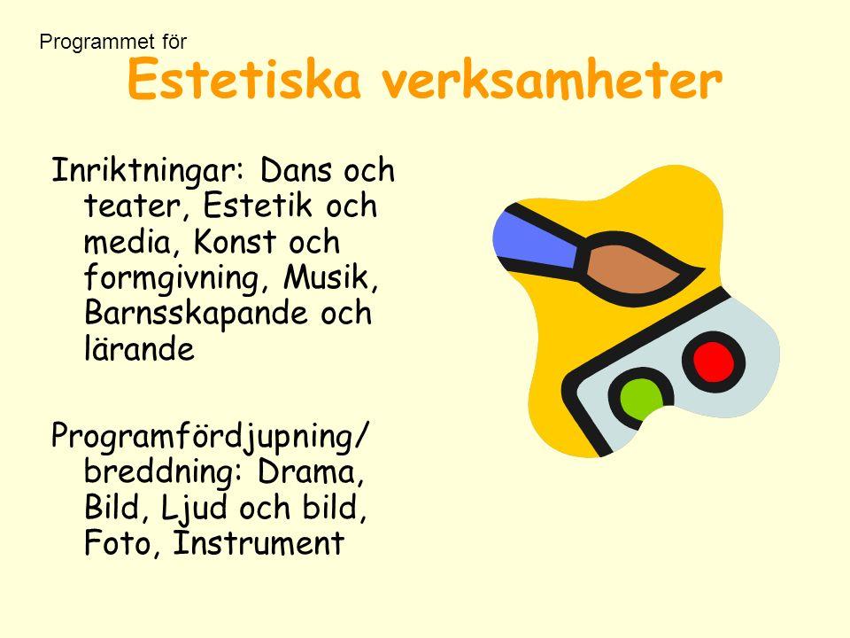 Estetiska verksamheter Inriktningar: Dans och teater, Estetik och media, Konst och formgivning, Musik, Barnsskapande och lärande Programfördjupning/ breddning: Drama, Bild, Ljud och bild, Foto, Instrument Programmet för
