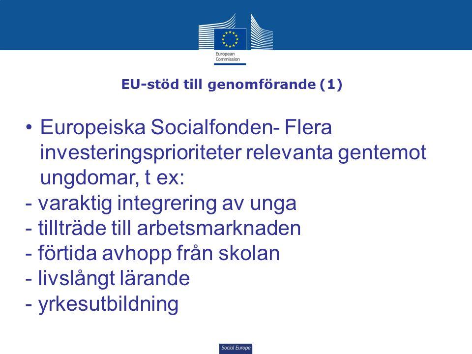 Social Europe EU-stöd till genomförande (1) Europeiska Socialfonden- Flera investeringsprioriteter relevanta gentemot ungdomar, t ex: - varaktig integrering av unga - tillträde till arbetsmarknaden - förtida avhopp från skolan - livslångt lärande - yrkesutbildning