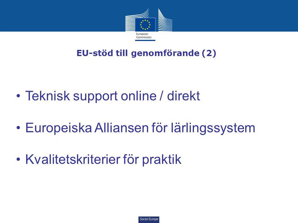 Social Europe EU-stöd till genomförande (2) Teknisk support online / direkt Europeiska Alliansen för lärlingssystem Kvalitetskriterier för praktik