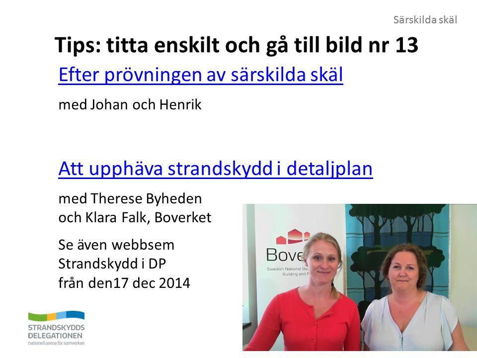 Särskilda skäl Tips: titta enskilt och gå till bild nr 13 Efter prövningen av särskilda skäl med Johan och Henrik Att upphäva strandskydd i detaljplan