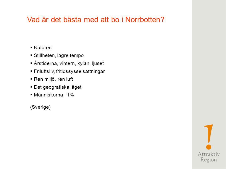  Kallt, kyla  Renar  Snö  Luleå  Fjäll  Vackert  Långt norrut  Vinter  Naturen  Kiruna  Norrland  Mygg (Sverige) Vad kommer du att tänka p
