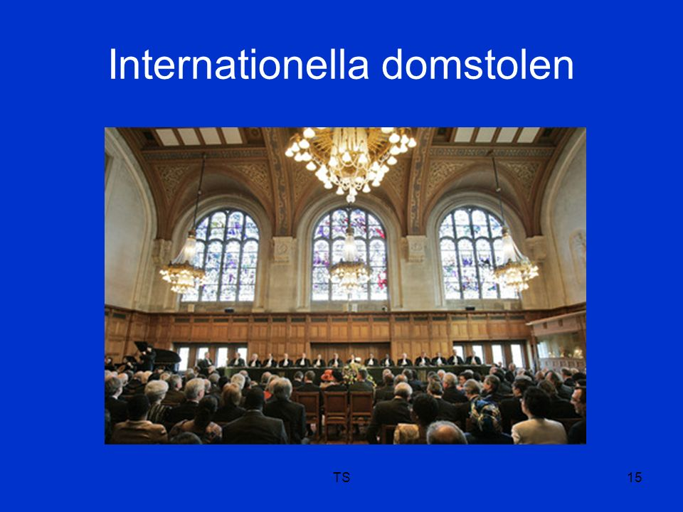 Internationella domstolen TS15