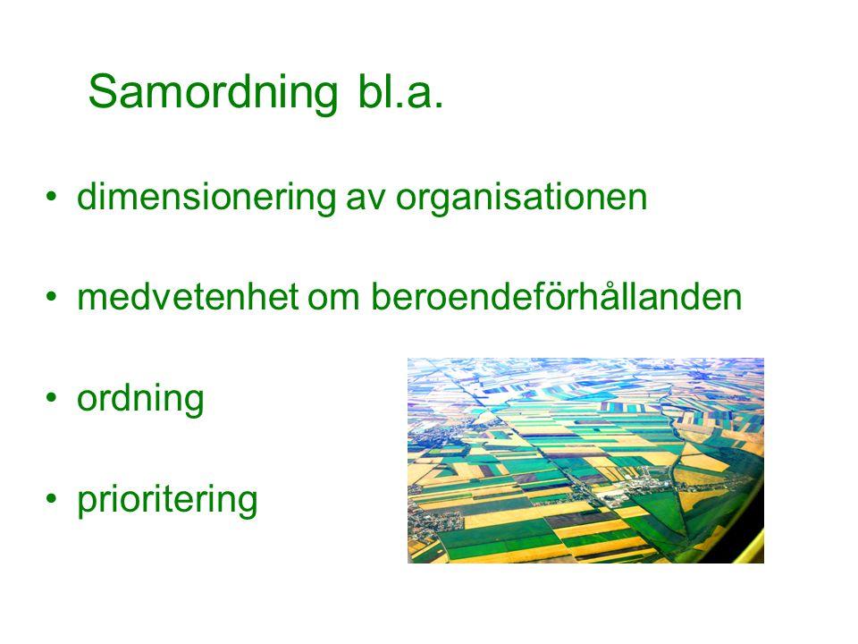 Samordning bl.a. dimensionering av organisationen medvetenhet om beroendeförhållanden ordning prioritering
