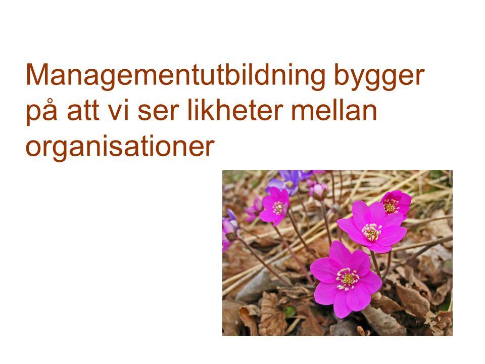 Managementutbildning bygger på att vi ser likheter mellan organisationer