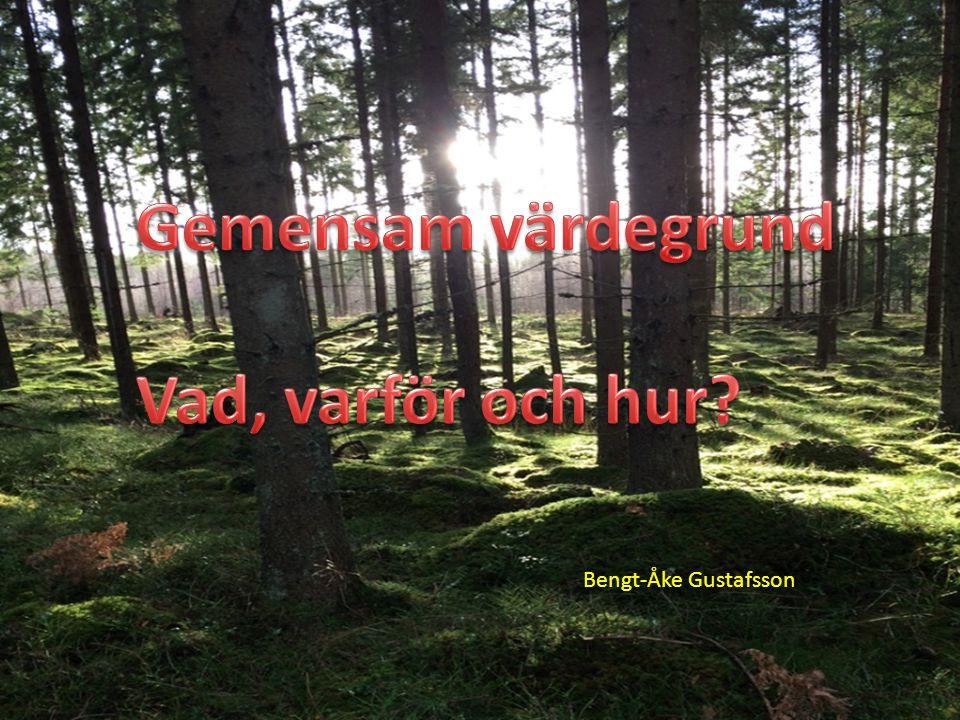 BENGT-ÅKE GUSTAFSSON Fil dr. Bildspel om värdegrund B-Å Gustafsson © Bengt-Åke Gustafsson