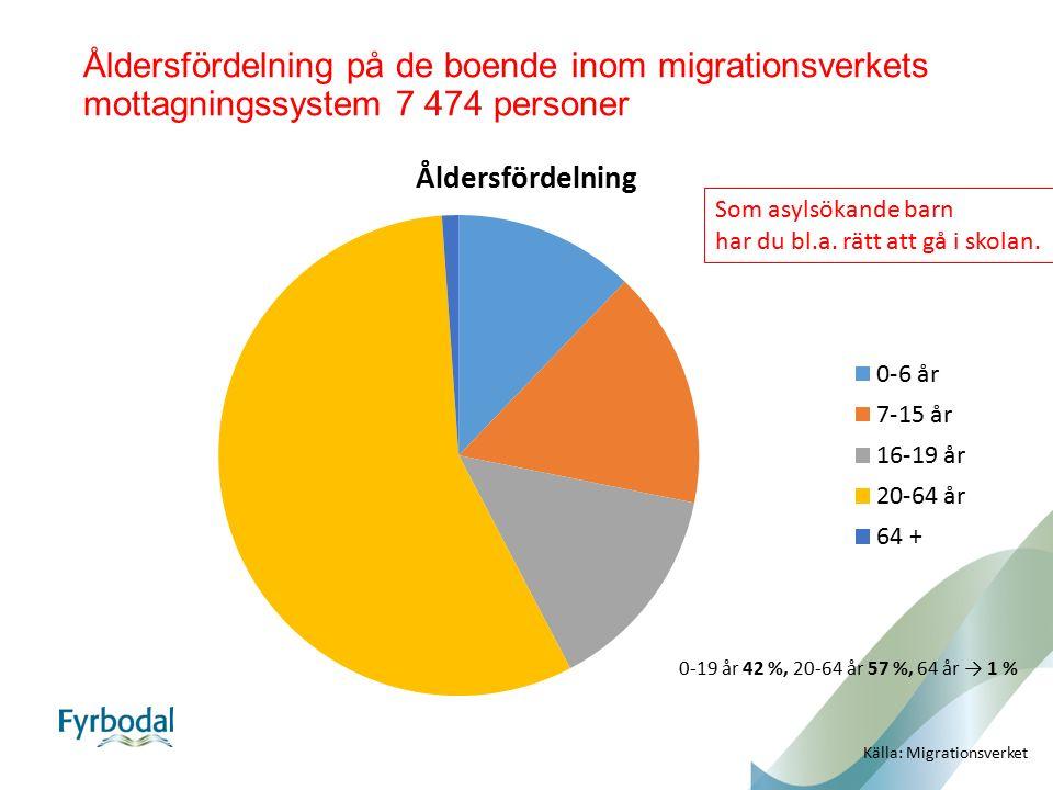 Åldersfördelning på de boende inom migrationsverkets mottagningssystem 7 474 personer Källa: Migrationsverket Som asylsökande barn har du bl.a. rätt a