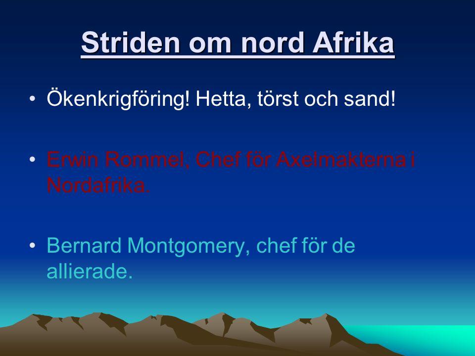 Striden om nord Afrika Ökenkrigföring! Hetta, törst och sand! Erwin Rommel, Chef för Axelmakterna i Nordafrika. Bernard Montgomery, chef för de allier