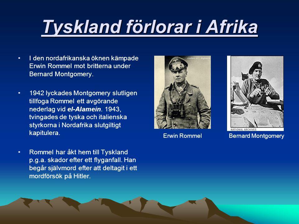 Tyskland förlorar i Afrika I den nordafrikanska öknen kämpade Erwin Rommel mot britterna under Bernard Montgomery.