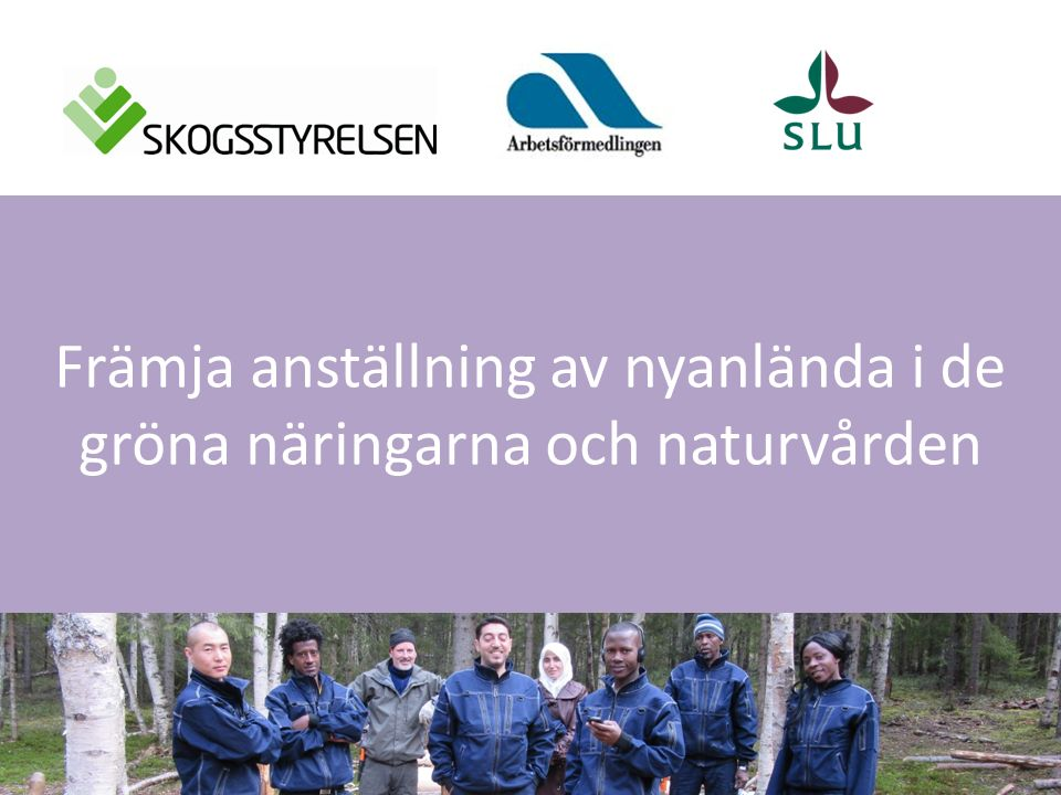 Exempel Skogen som integrationsarena Vad: Utbildning på gymnasienivå Ansvarig: SLU och naturbruksgymnasierna Projektledare: Ann Dolling, s-fak